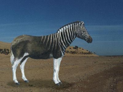 20世纪灭绝的动物
