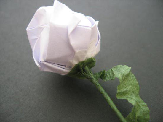 [转载]纸折玫瑰花的方法