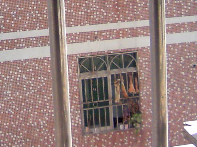 幼儿园门窗装饰过年图片