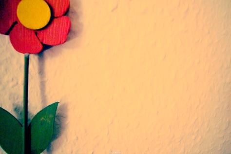 每一朵小花都紧密挨着,形成长长一串,故因此得名.