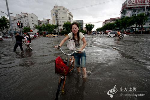 上海暴雨牌照_实拍上海暴雨照片 上海暴雨强度百年一遇
