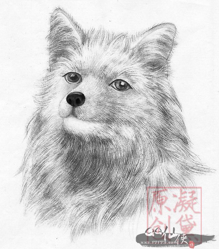 【黛记】手绘狐狸——为插画大赛活动而作