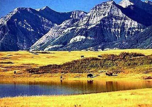 北美洲图片著名风景