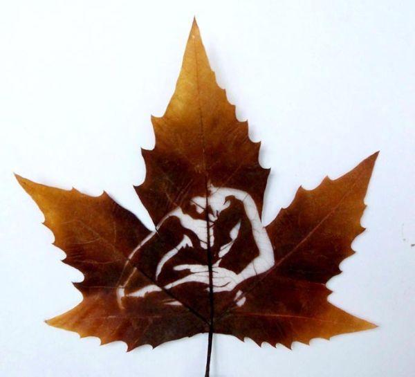 枫叶的艺术 - AAA级私秘视觉馆 - 视觉与色彩的世界