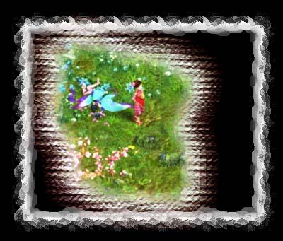 一只折翼的蝴蝶图片