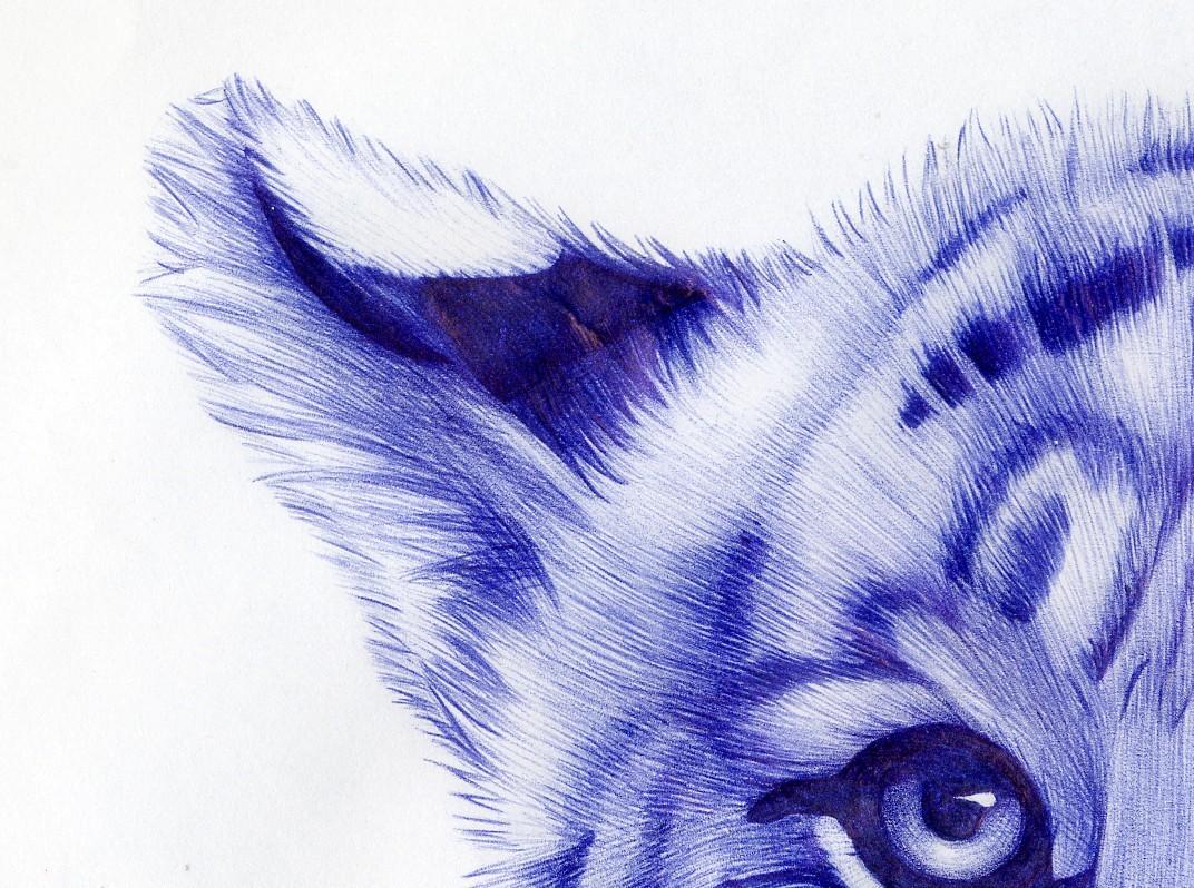 超牛叉的圆珠笔手绘图画,很震撼!