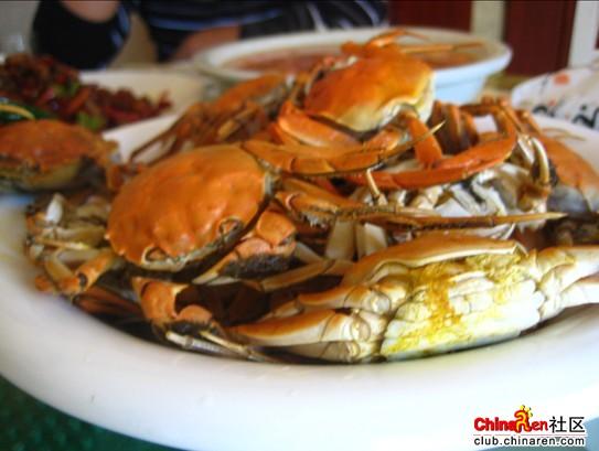盘锦河蟹图片素材