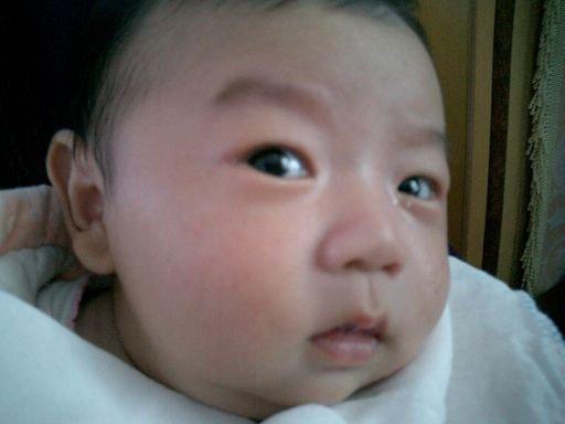 胖宝宝搞笑表情 萌杀双眼