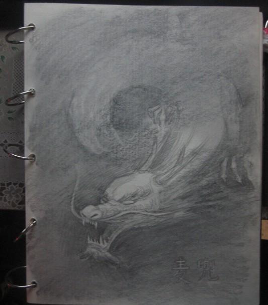 这是画板上还未完成的飞龙~这样的画对我来说还是很困难的额.图片