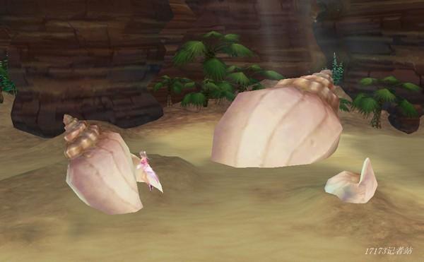 上最美的蓝天与大海,沙滩上遍布海星贝壳,硕大的海螺随处可见,大